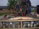 pic of cabins and bowfishing tournament 007.jpg
